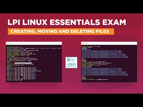 LPI Linux Essentials Exam - Creating, Moving and Deleting Files ...