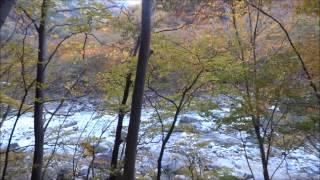 栃木県龍王峡紅葉散策2012