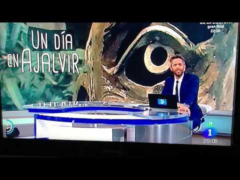 Ajalvir en España Directo.