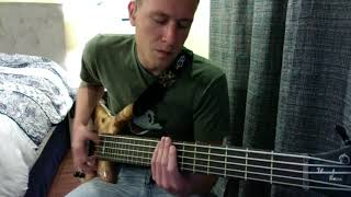 What was I Thinking- 311- Bass Cover