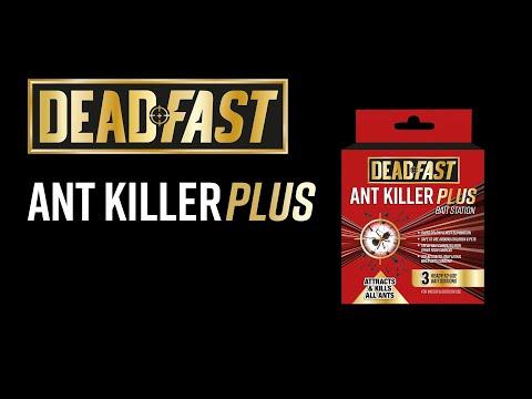 Deadfast Ant Killer Plus Bait Station Video