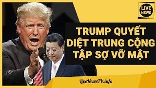 Donald Trump Tuyên Bố Quyết Diệt Trung Cộng, Tập Cận Bình Sợ Vỡ Mật - Tin Biển Đông