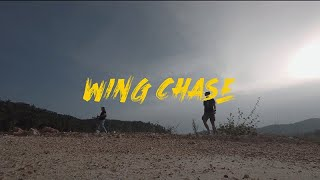 Wing Chase | FPV