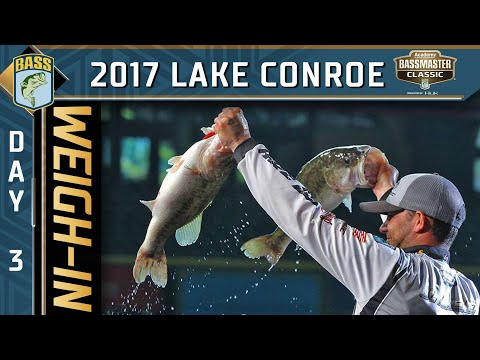 Classic weigh-in: 2017 Championship Sunday