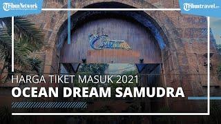 TERBARU! Harga Tiket Masuk Ocean Dream Samudra Ancol, Selama Februari 2021