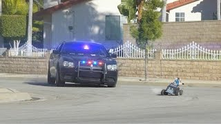 Cat Cop Chase - Video Youtube