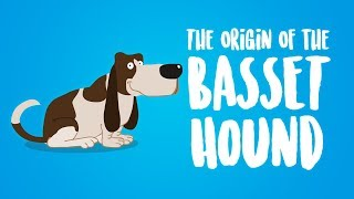 The Origin of the Basset Hound (Animation)