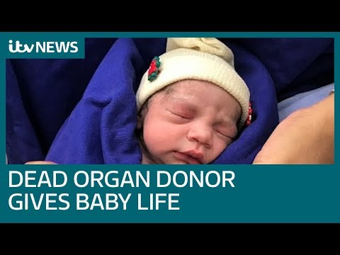 Baby born after first womb transplant from dead donor in Brazil   ITV News