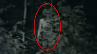 Top 5 Real Alien Sightings Caught On Camera