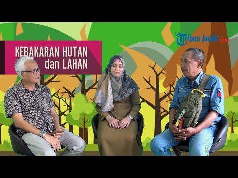 Bincang-bincang Bersama Creator Video Dokumenter BNPB Terkait Karhutla dan Bencana Kabut Asap