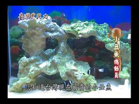 臺灣農民力第48集