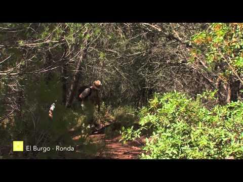 Der Große Wanderweg Málagas. Etappe 23: El Burgo – Ronda (Deutsch)