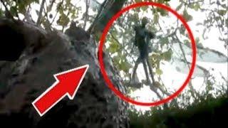4 Strange Creatures caught in Tree