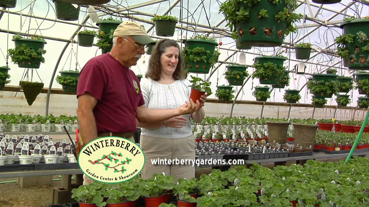Winterberry Gardens :30 TV Commercial