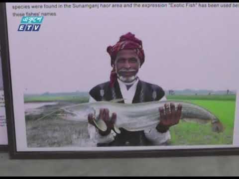 কুয়াকাটায় সমুদ্র জাদুঘর, মুগ্ধ পর্যটকরা || ETV News