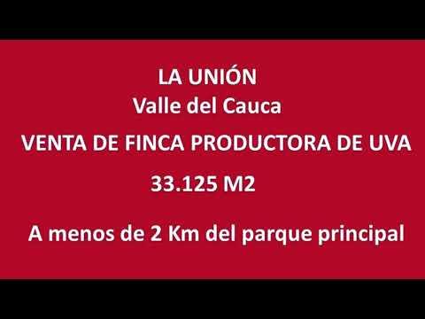 Fincas y Casas Campestres, Venta, La Unión - $800.000.000