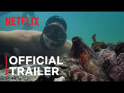 One Octopus Thing: This Sweet Documentary Will Steal Your Heart