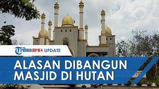 Cerita Pemilik Masjid Mewah yang Dibangun di Tengah Hutan, Ternyata Ada Niat Khusus yang Tak Terduga