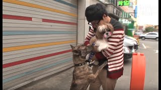 Dog Can't Get Over His First Love, And Waits For Her Endlessly *Plot Twist* | Kritter Klub