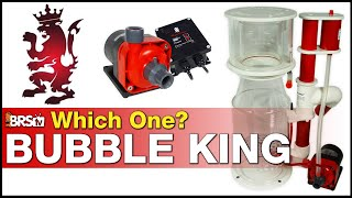 Can you spot the difference? Bubble King Protein Skimmer Spotlight - Royal Exclusiv