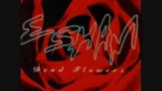 ESHAM / WHAT DID I DO WRONG ?