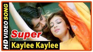 Super Tamil Movie   Songs   Kaylee Kaylee song   Nagarjuna   Ayesha Takia