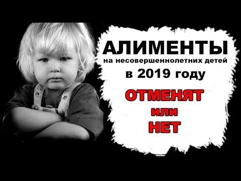 Алименты | Жириновский предложил платить государству