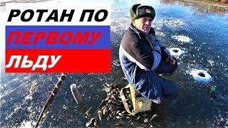Где клюет ротан в московской области
