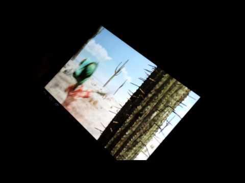Dvejetainės parinkties vaizdo įrašo pavyzdys