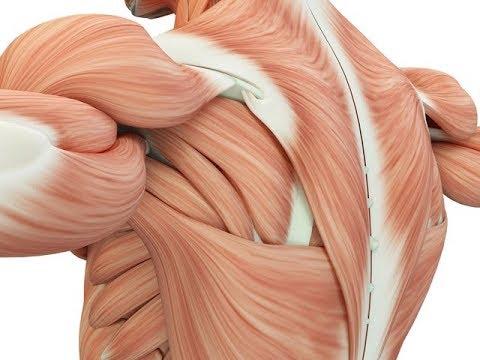 Jak budować mięśnie podczas jazdy na rowerze
