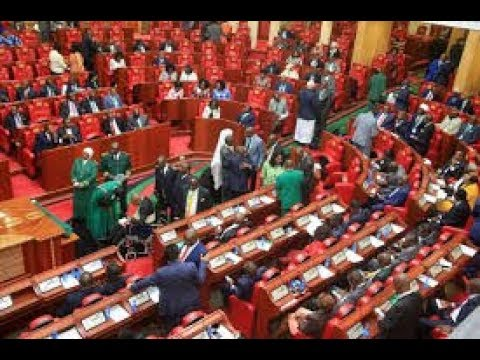 Anti-VAT MPs stage demonstrations in Kenya's National Assembly