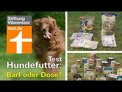 Test Hundefutter 2019: Barf oder Dose? Welche Nassfutter im Test durchgefallen sind