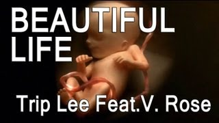 Trip Lee Feat. V.Rose - Beautiful Life  (Typography)