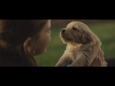 Chevy, and Chevrolet Commercial (2014) (Television Commercial)