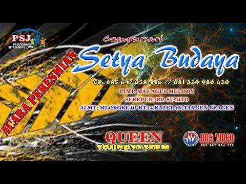 LIVE GEBYAKAN CS. SETYA BUDAYA 085 647 058 446 // QUEEN SOUND SYSTEM // JMS SHOOTING
