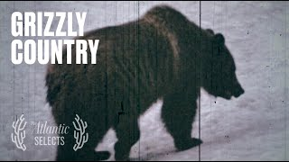 Grizzly Bears Saved My Life
