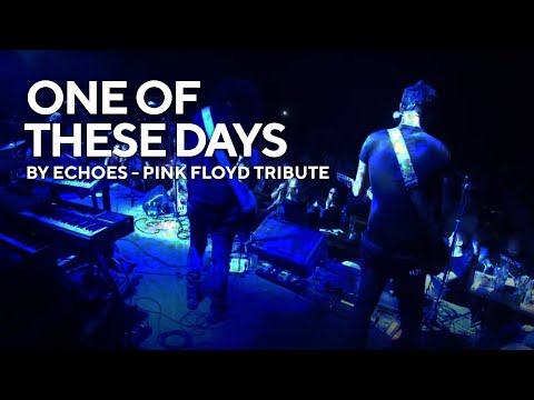 Media - Echoes - Pink Floyd Tribute Show