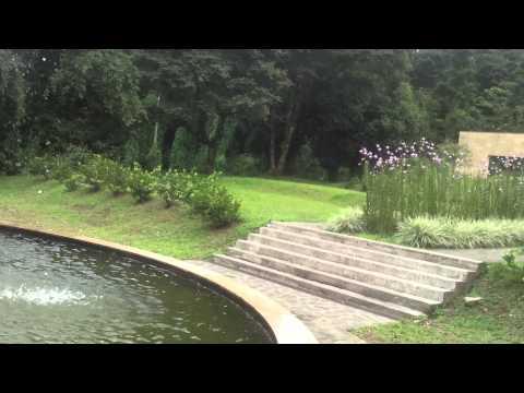 Photographie Vidéo youtube 3ts3x3G2B24