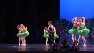 Maleficent fairies ballet