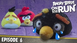 Angry Birds On The Run | Breaking And Entering   S1 Ep6