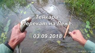 Рыбалка на реке лежа вологодская область