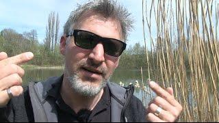 Alles über Polarisationsbrillen für Angler. Darauf solltet ihr bei Polbrillen achten.