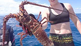 LOBSTER {Catch Clean Cook} How to cook Lobster Tail
