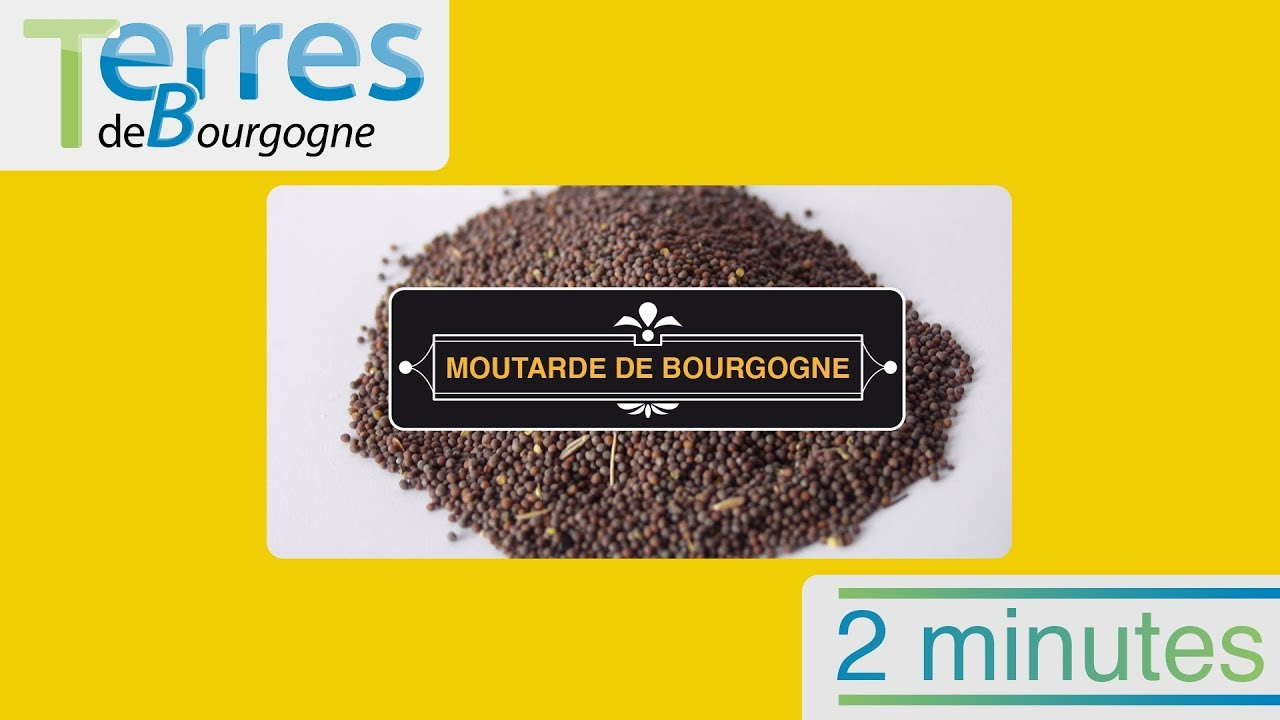 Moutarde : mettez la sauce pour connaitre son origine ?