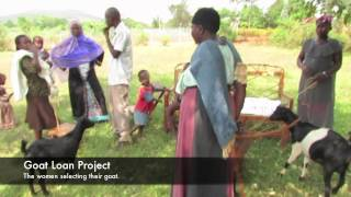 YIMBA UGANDA- Goat Loan Project