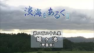 淡海をあるく 姫ケ池 甲賀市