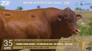 Coro 2259 b4 fiv