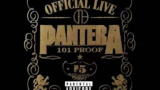 This Love - Official Live: 101 Proof