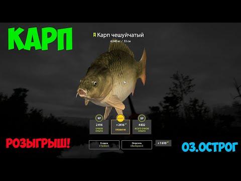 Русская рыбалка 4. оз.старый острог карп,карась