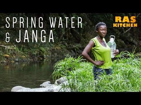 Spring Water Mission and Janga Catching with Shannel part 2